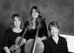 Amarosa Trio (Sep '14)